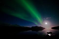 Aurora Borealis in West Fjords, Iceland (Asmita Kapadia) Tags: sky west colour water reflections landscapes iceland nightshoot fjords northernlights auroraborealis djupavik wwwasmitakapadiaphotographycom