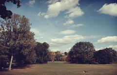 der himmel ber... (HerrBohn) Tags: park autumn trees sky fall leaves clouds landscape cityscape dof seasons pentax herbst jahreszeit wiesen menschen tamron f28 cloudporn cpl k5 hallesaale 1750mm peisnitz tagwahnsinn