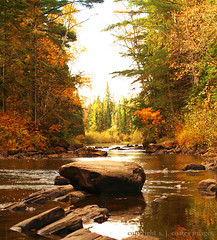 Whiskey Rapids (S. J. Coates Images) Tags: fall algonquin
