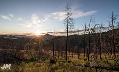 Eastern Morning (awdftw!) Tags: painted hills adventure outdoors hiking eastern oregon explore fence wide angle landscapes landscape colors sunrise sun warm vibrant color canon sigma 7dmkii jaren morris photography production trees mountains distance onward travel exploration