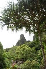 DSC_5342 (meganewens) Tags: maui iao needle sunset kaanapali lahaina hawaii digital black white waterfall
