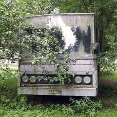Buskissa (neppanen) Tags: sampen discounterintelligence finland suomi helsinki helsinginkilometritehdas pivno51 piv51 reitti51 reittino51 car auto buss bus derelict abandoned hyltty puska bush