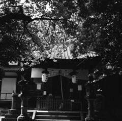 160724_ZenzaBronicaS2_002 (Matsui Hiroyuki) Tags: zenzabronicas2 nikonnikkorp75mmf28 fujifilmneopan100acros epsongtx8203200dpi