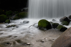 Water spring (_webman_) Tags: cascade wasser wasserfall brunnen fountain stone moss plantenunblomen hamburg quelle spring longexposure