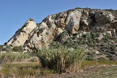 742 Eraclea Minoa beach (Pixelkids) Tags: eracleaminoa sizilien italien sicily strand