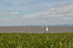May the Winds Take You (Oliver MK) Tags: may winds take you portishead windsurf windsurfing boat sea outdoor landscape blue sky green nikon d5500