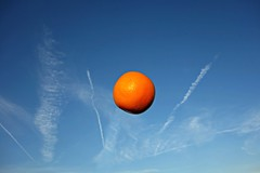 PUBLIC DOMAIN DEDICATION - Pixabay-Pexels - digionbew 18.  05-09-16 Orange in the skies LOWER RES DSC01638 (MabelAmber️®***Pluto5339***Incognito) Tags: orange fruit food nutrition diet vitamin dessert succulent juicy sweet tasty refreshing breakfast citrusfruit citrus sky orangeinthesky publicdomaindedication pixabay pexels mabelamber publicdomaindedicationpixabaypexels