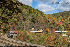 Fall at The Curve (Darryl Rule's Photography) Tags: altoona autumn emd folliage freight ge helpers heritage heritageunit horseshoecurve intermodal mapleton middledivision mixedfreight ns norfolksouthern oil pennsy pennsylvania pennsylvaniarailroad pittsburghline reading readingrailroad sd70ace sd80mac signals train trains unionpacific