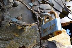 Top Lock (Kimoufli) Tags: rouille cadenas dtail