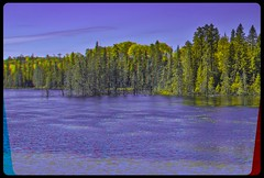 Lake en Route 129 in Ontario 3-D / Anaglyph / Stereoscopy / HDR / Raw (Stereotron) Tags: north america canada province ontario nature landscape lake river creek tree plants forest woods outback backcountry indiansummer autumn fall anaglyph anaglyph3d redcyan redgreen optimized anaglyphic anabuilder 3d 3dphoto 3dstereo 3rddimension spatial stereo stereo3d stereophoto stereophotography stereoscopic stereoscopy stereotron threedimensional stereoview stereophotomaker stereophotograph 3dpicture 3dglasses 3dimage twin canon eos 550d yongnuo radio transmitter remote control synchron in synch kitlens 1855mm tonemapping hdr hdri raw