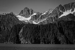Kenai Fjords National Park (mlhell) Tags: alaska blackwhite glacier kenaifjords kenaifjordsnationalpark landscape mountains nature