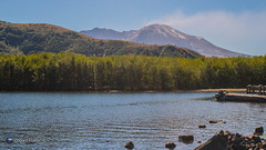 Mount St. Helens and Coldwater Lake (Loowit Imaging - Steve Rosenow, Photographer) Tags: mountsthelens mtsthelens sthelens volcano mountain landscape scenic scenery pacificnorthwest volcaniclandscape nikon nikond5500