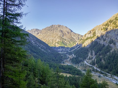 20160911_090337 (buliro) Tags: mountains montagne montagnes alpi alpes alps vda valledaosta valle daosta daoste vallée valléedaoste aostavalley valsavarenche granparadiso parco nazionale grand paradis national park larch conifers mélèzes larice conifere