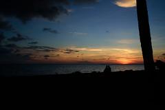 Watching the Sunset (Emily Kistler) Tags: america beach d750 evening florida nature nikon outdoors usa unitedstates stpete sunset landscape silhouette night sky clouds sunshineskywaybridge