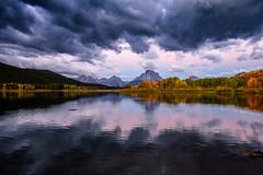 DSC_1748.jpg (jmdarter) Tags: wildlife mountains grandtetons wyoming