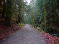 "Padden Lake Path on the mountain • <a style=""font-size:0.8em;"" href=""http://www.flickr.com/photos/59137086@N08/7885380756/"" target=""_blank"">View on Flickr</a>"