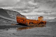 el naufragi de mjoifjordur (_perSona_) Tags: iceland islandia barca barco ship rusty shipwreck este eastern fiord est fiordo oxidado naufragio naufragi oxidat mojoifjordur