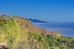 California Big Sur 88 (paspog) Tags: california cliff usa fog unitedstatesofamerica bigsur pacificocean falaise brouillard ocanpacifique