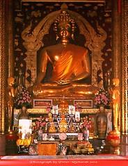 IMG_0954ce Wat Phrathat Doi Tung. วัดพระธาตุดอยตุง