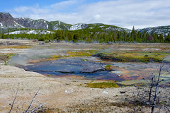 Biscuit Basin (bhophotos) Tags: travel blue usa black green nature colors pool yellow landscape geotagged nikon yellowstonenationalpark yellowstone wyoming hotspring thermal ynp wy runoff biscuitbasin d700 1635mmf4gvrii blackdiamondpool bruceoakley