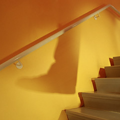 "Shadow Stairs • <a style=""font-size:0.8em;"" href=""http://www.flickr.com/photos/76347899@N05/8021174779/"" target=""_blank"">View on Flickr</a>"