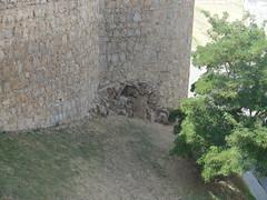 DSC08136 (madskills421) Tags: brick castle spain pueblo ciudad espana spanish espanol castillo avila muros murallas