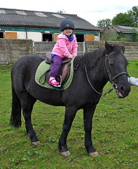 Carmen's first pony ride aged 3 1/2.  La primera vez montado a caballo. (Juanito Moore ( John Moore )) Tags: pink child helmet riding moore pony carmen saddle juanito bridle stirrups ridingschool highbeechstables