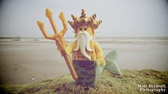 Sea King (Hellbelly) Tags: toy lego minifig series7 twitter oceanking canong12
