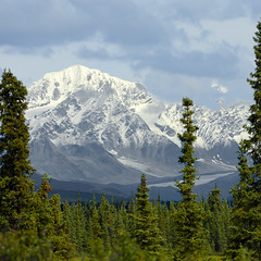 Mount McKinley (Dani.Noguera) Tags: road trip usa mountains nature alaska river landscape united ak hwy states wilderness denali mckinley range isle susitna