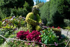 My Sweet Gardener at Regent's Park! (picaddict) Tags: uk flowers london sunny september wateringcan regentspark wateringpot giesskanne plantgardener gardenersart