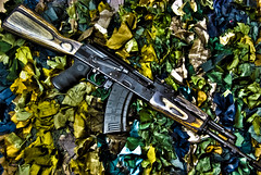 Satin Camo (Strangely Different) Tags: kitchen gun rifle camo weapon rug hdr ak47 saiga strangelydifferent