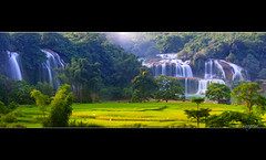 Ban Gioc Waterfall (cuongvnd) Tags: china travel food mountain plant color green art nature ecology field japan clouds landscape asian thailand photography asia rice terrace earth farm burma harvest ground vietnam valley malaysia plantation land huge environment myanmar agriculture curve sapa indochina terraced mountaintaint