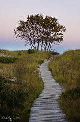 Kohler-Andrae State Park (rjseg1) Tags: park sunset wisconsin state dune lakemichigan kohler andrae