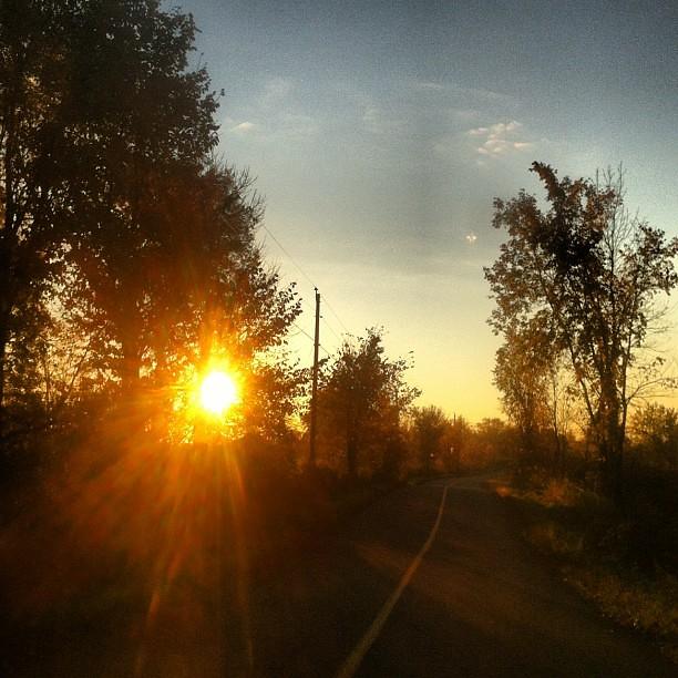 Soleil matinal