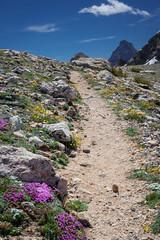 2016Upperpaintbrush13s-45 (skiserge1) Tags: park camping lake mountains america freedom hiking grand jackson national backpacking wyoming teton tetons