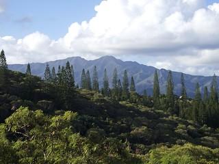 Nouméa, Vue du Parc forestier