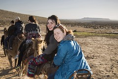 What's Not to Love (Marissa Straw) Tags: israel camels