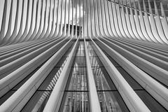 dove 2 (noaxl.berlin) Tags: manhatten sony a7rii samyang rokinon walimex 14mm newyork ny architektur architecture skyscraper night brooklyn lights skyline bridge stars dove wtc worldtradecenter subway metro