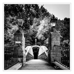 Jubilee Bridge - Matlock (Ken Walker Photography) Tags: stone ironwork blackandwhite bridge fujixt2 derbyshire jubileebridge loverswalk acrosfilmsimulation matlockbaths