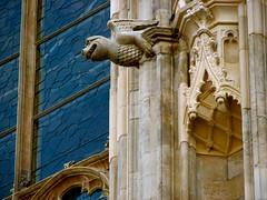 Gothic wyvern (Szymek S.) Tags: dragon wyvern gargoyle window niche canopy church cathedral minster yorkminster architecture gothic town oldtown york yorkshire england greatbritain unitedkingdom