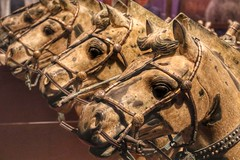 Terracotta Horses (Nick Fewings 4.5 Million Views) Tags: craftsmanship craft sculpture horse horses exhibits nickfewings america usa illinois fieldmuseum museum chicago chinese china army terracotta terracottaarmy 2016