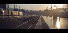Empty Platform (James Yeung) Tags: cine cinematic anamorphic kowa movie platform train marseille france