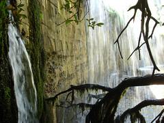Agua que brota y que cae. (margabel2010) Tags: cascadas cascada presa presas agua aguadulce pared ramas madera piedra hojas airelibre ro sierra guadarrama blanco blancoynegro blancoyverde