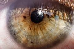 Left eye (EnKajsa) Tags: enkajsa kajsa eriksson fotokajsa sweden sverige selfie selfportrait eyes closeup close up macro nikon d7000 beautiful unique eyelashes fascinated cool awesome dreamy sunlight brown green sun