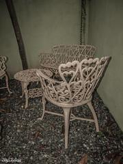 (CapBels 2) Tags: tea mistery chair silla jardn