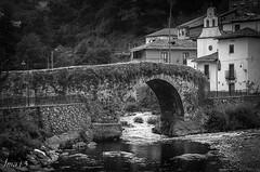 15 04 09 15 04 09 DSCF3138 (jmacirez13) Tags: asturias cangasdelnarcea espaa europa blancoynegro monocromtico monocromo monocromatico puente rio naturaleza nature