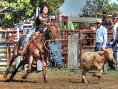 Moving On (clarkcg photography) Tags: calf roping rope horse work rodeo hobby practice jackpot rentiesville gettogether locals connorsropingteam