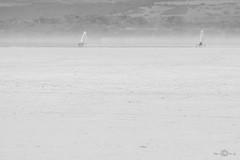 Stagno di Sale 'e Porcus, landsailers (--marcello--) Tags: stagno saleeporcus oristano sardegna landsailer landsailing landscape blackandwhite sail wind
