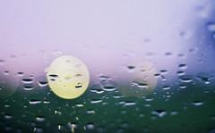 Morning rain (PattyK.) Tags: rain morningrain rainywindow raindrops nikon ilovephotography myphotos autumn september 2016       ioannina giannena