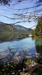 Almsee - Austria (Been Around) Tags: almsee grnau almtal lake salzkammergut obersterreich aut autriche austria upperaustria sterreich grnauimalmtal natur nature ufer seeufer wandern wanderweg hiking